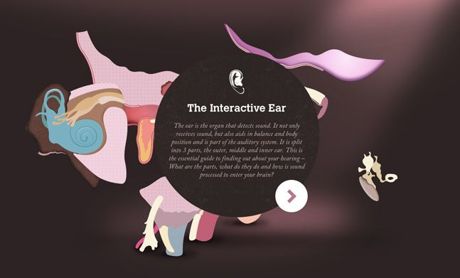 Winner 27 April 2013  The Interactive Ear by The Interactive Ear  http://www.cssdesignawards.com/css-web-design-award-winner.php?id=19063  Amplifon have put together this fantastic interactive guide to the mechanics of the human ear.