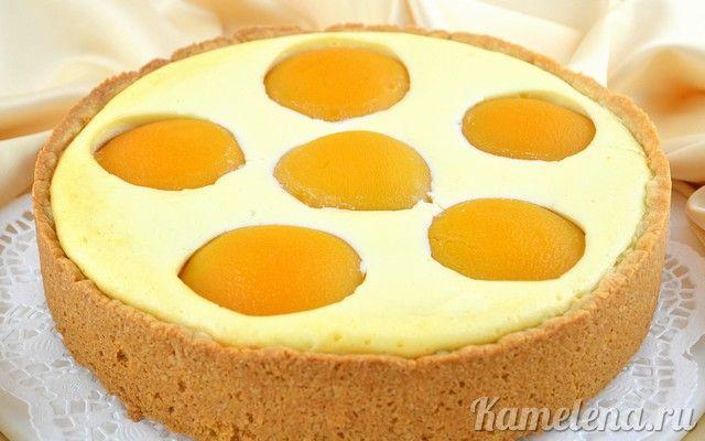 torta di crema di formaggio e pesche sciroppate --- Творожный пирог с персиками — 11 шаг