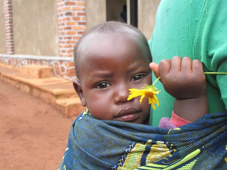 Stunning little child grasping a daisy