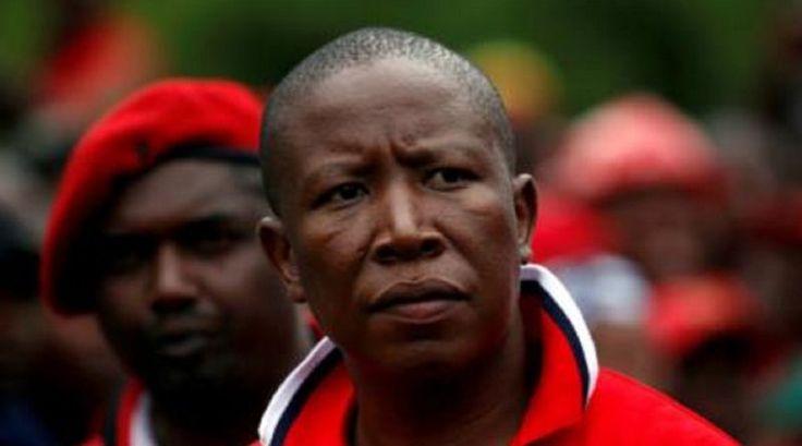 Malema's 'barbaric' white slaughter comments denounced - CrimeSA.com