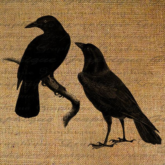 Two Black Crows Ravens Birds Crow Raven Digital by Graphique, $1.00