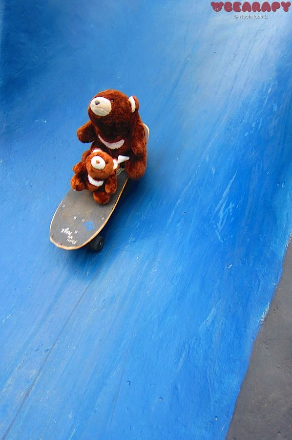 Muddie & Punkie finally can ride a skateboard. Gund Snuffles. By Noch Noch the Bearalist at Bearapy. http://bearapy.me