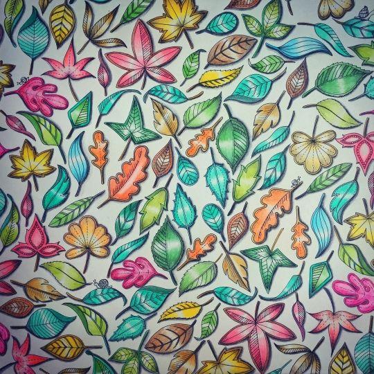 241 Best ColoringSecret Garden Images On Pinterest