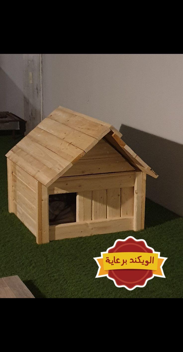 بيت قطط