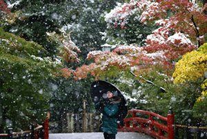 Kamakura, Japan: A visitor takes a photo in the snow