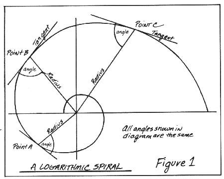 Annotated logarithmic spiral