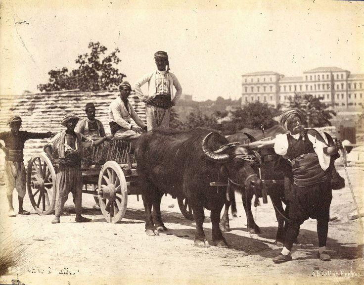 Manda ArabasıAbdullah Fréres fotoğrafı / 1875