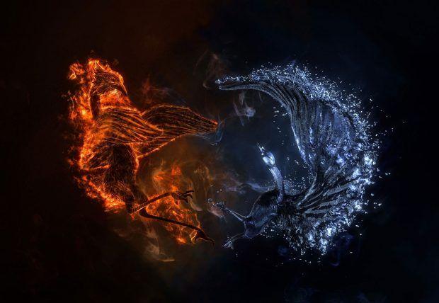Phoenix Bird Wallpapers Free Download Dengan Gambar Gambar Hewan Deviantart Fantasi
