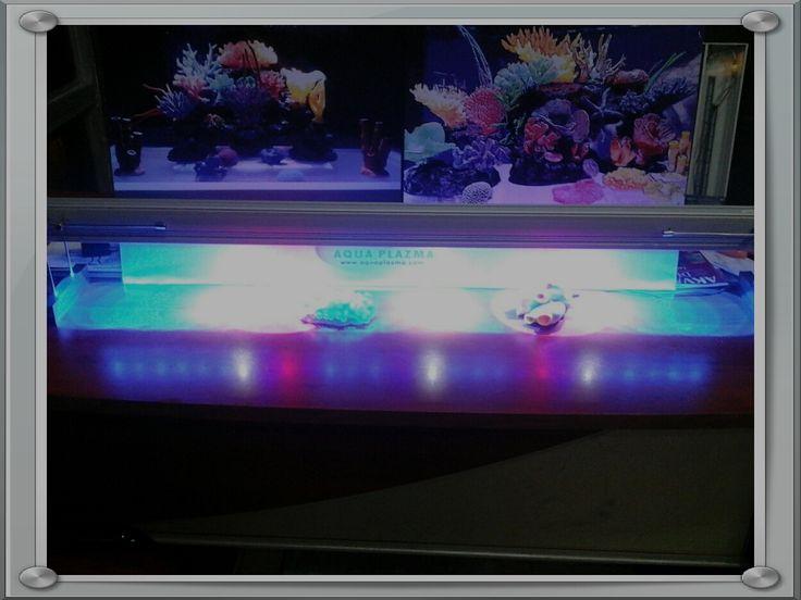 Aquaplazma Led armatür & Akvaryum Sistemleri  05423457949