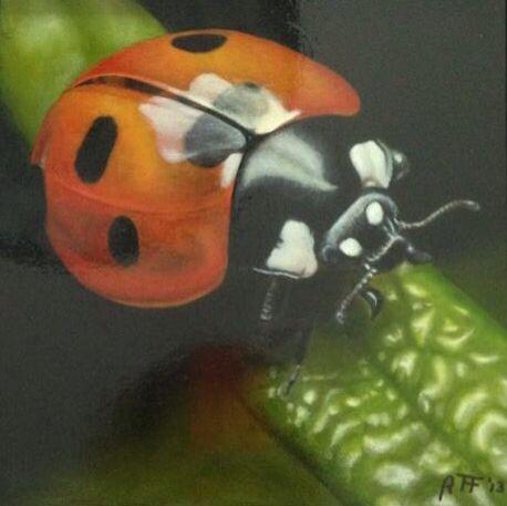 Ladybug. Oil painting Lieveheersbeestje. Olieverfschilderij