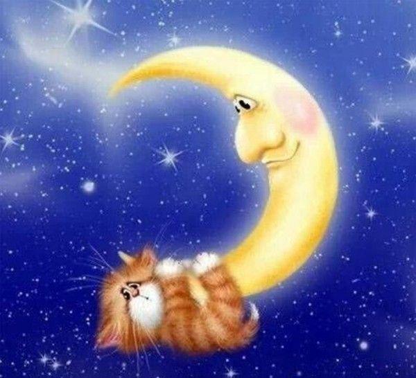 Красивые картинки good night
