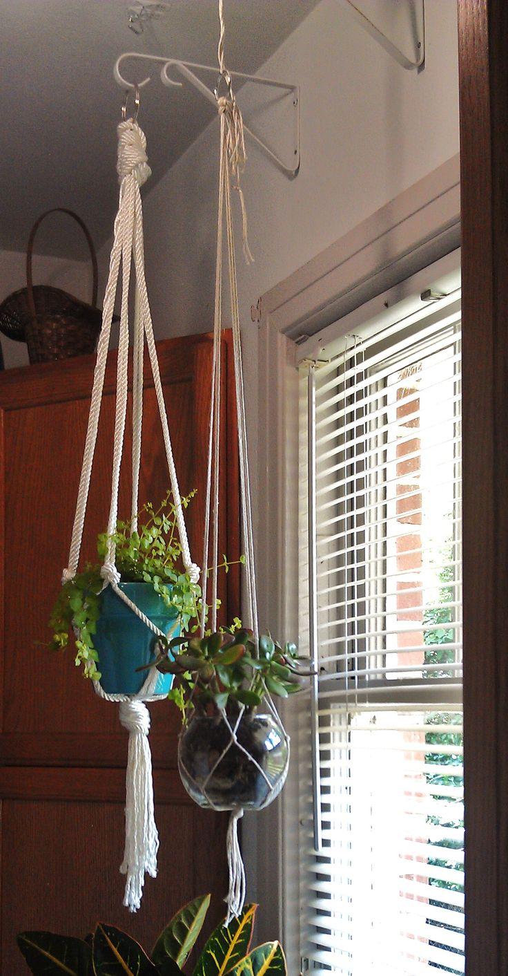 How do you hang indoor plants?