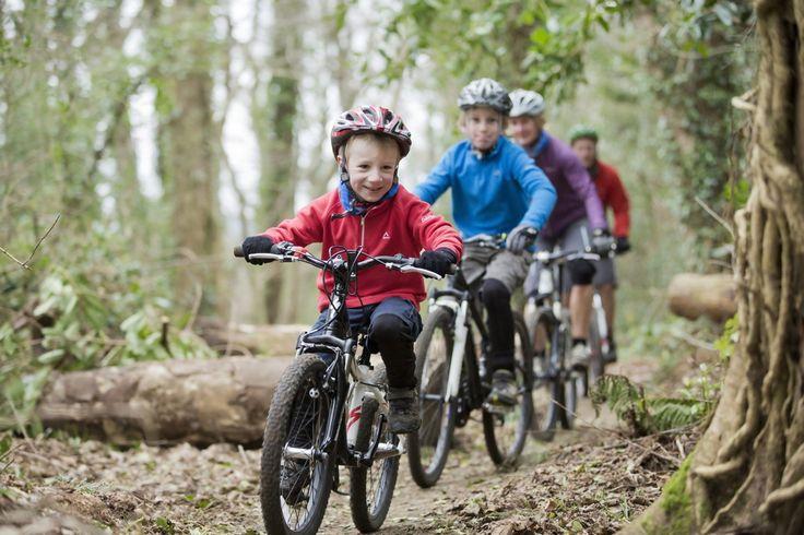 Randonnée cycliste en famille, Foret Castlewellan, Down - Northern Ireland Tourist Board