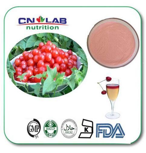 500g Wholesale  Vitamin C Acerola Cherry P.E / Acerola Cherry Fruit Powder