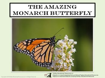 Price $4.00  In The Amazing Monarch Butterfly, learners answer 38 questions after reading and participating in activities about the life of the Monarch Butterfly. The task cards include 38 questions, answer key, 2 awards cards, links to printable student fact sheet for use with the task cards, and links to Monarch Butterfly teaching guides.