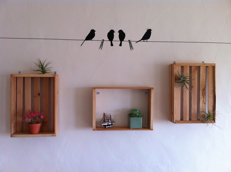 homemade frames for air plants