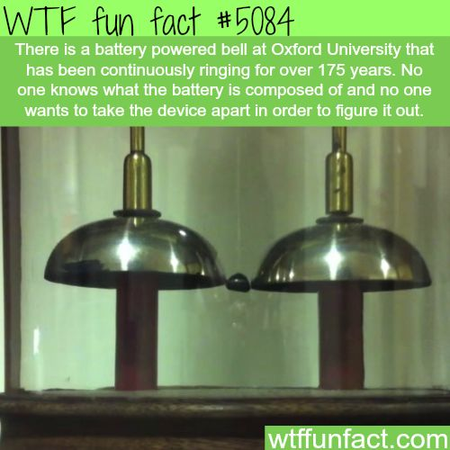 The oldest running battery - WTF fun facts