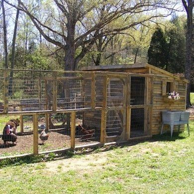 Planning on doing something like this with the industrial shelves as the shed and a yard that extends