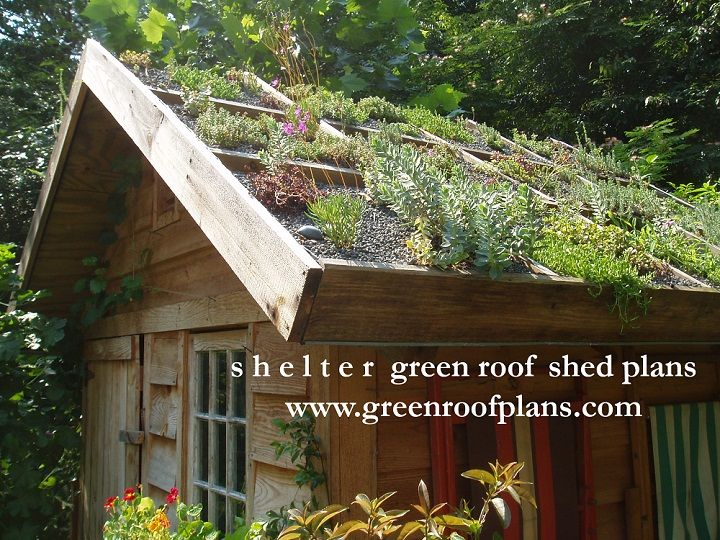 Green Roof Garden Shed in Raleigh, NC by Living Roofs, Inc. livingroofsinc.com  More images: greenroofs.com  Plans: www.greenroofplans.com