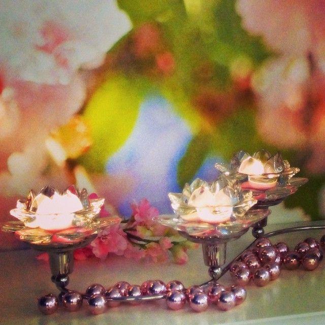 #partylite #lotus flower with #kvartett #kvartetti #spring #pink