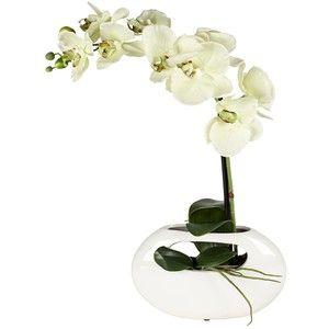 small white orchid glass pot - Google Search