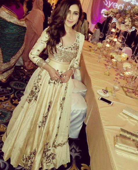 Shezray Saba American Model/Actress Chicago In A Beautiful Dress