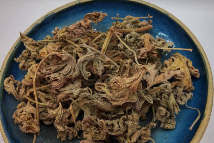 Pelargonium Citrosum dried leaves, dried leaves, tea, Culinary herbs, dried herbs, Mediterranean herbs, Aromatherapy herbs, organic herbs. by LunaAndLili on Etsy
