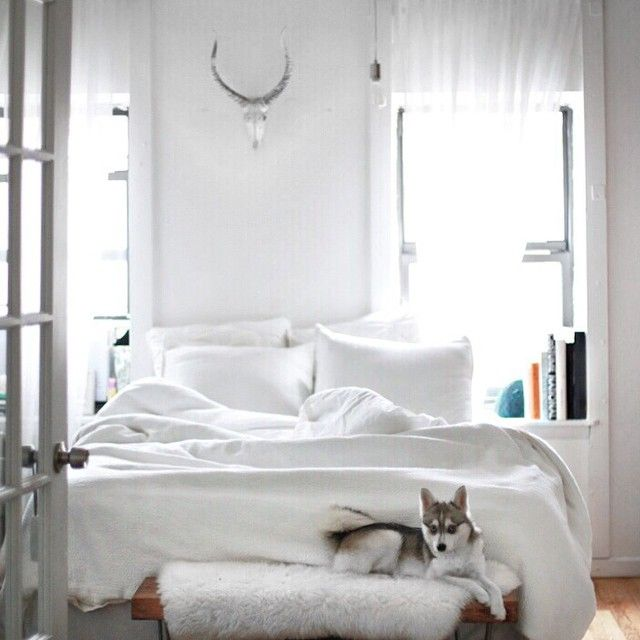 Master Bedroom Decorating Ideas Grey Walls Bedroom Interior With Wooden Flooring Best Neutral Bedroom Colors Small Bedroom Bed Ideas: 178 Best L O V E N E S T Images On Pinterest