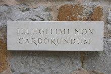 Latin Wall Plaque 'Illegitimi Non Carborundum' (Don't Let the Bastards Grind You Down)