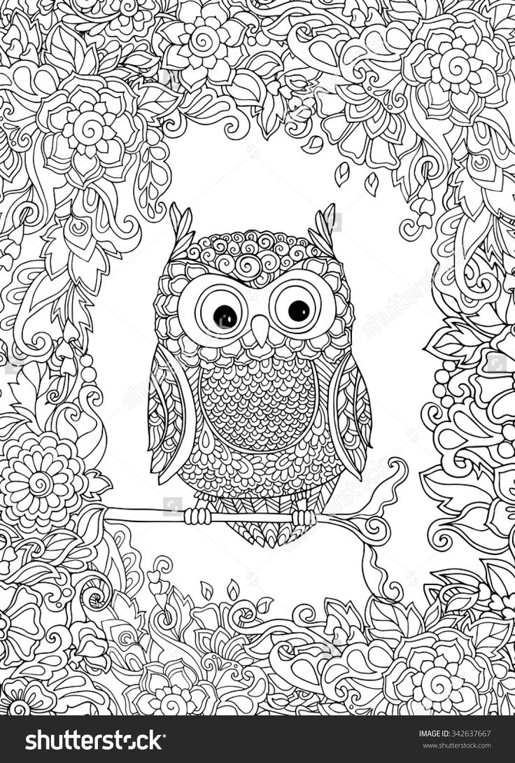 162 best owls images on pinterest secret gardens coloring books