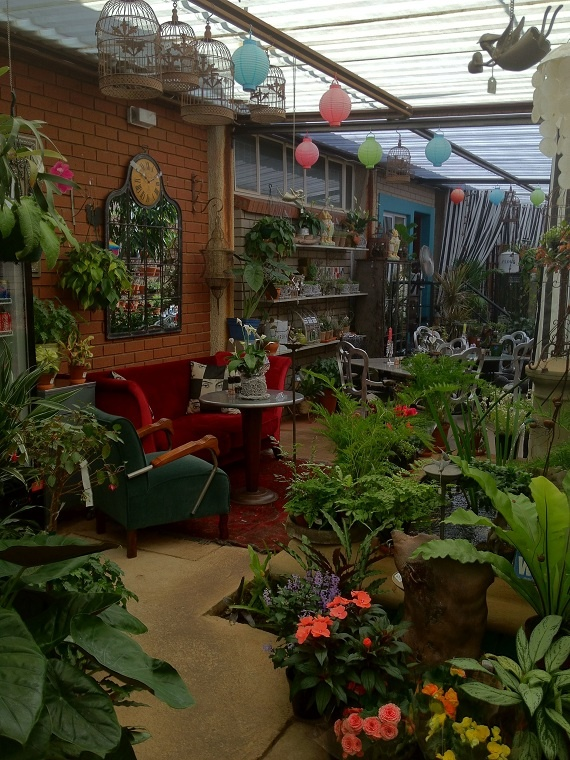 This is the type of cafe I love to have a coffee & chat with a friend.  Full of character and ambience.  Alice in Waterkloof, Pretoria SA. ( via of Beauty and Love)