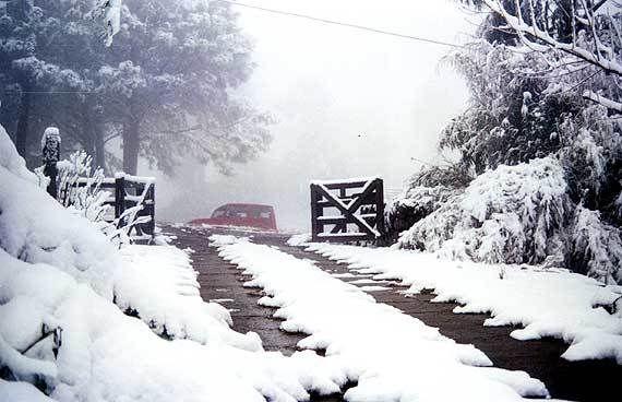 Inverno em São Joaquim, estado de Santa Catarina, Brasil. Na serra catarinense, em algumas regiões no Paraná e Rio Grande do Sul, havendo condições meteorológicas adequadas, a geada é certa, e ocasionalmente pode nevar.