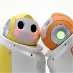 PaPeRo robot is bedoeld als een robot-metgezel. Hij kan onder andere meer dan dertig gezichten herkennen, reageren op aanraking en is bestuurbaar op afstand.