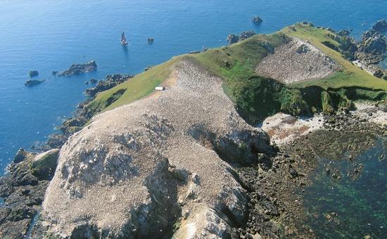 Si la Réserve Ornithologique de l'archipel des Sept-Iles fut le premier espace…