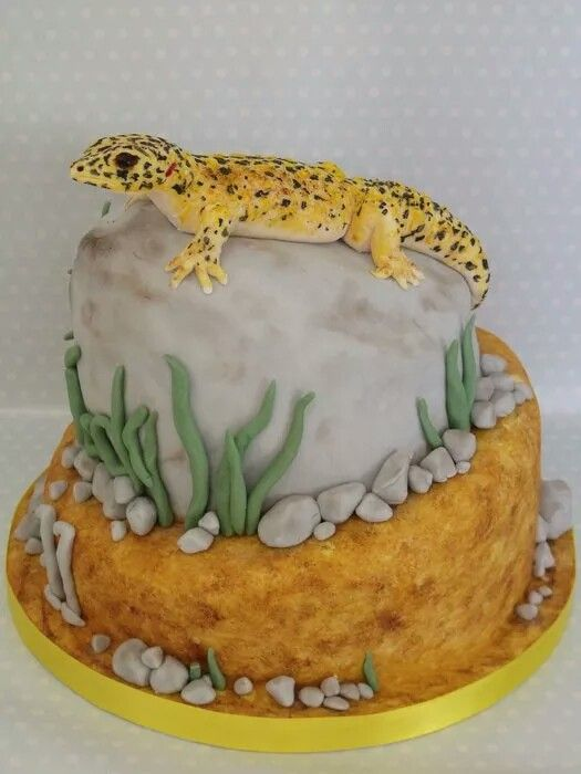 Best 25 lizard cake ideas on pinterest crocodile party gator als cake this year pronofoot35fo Choice Image