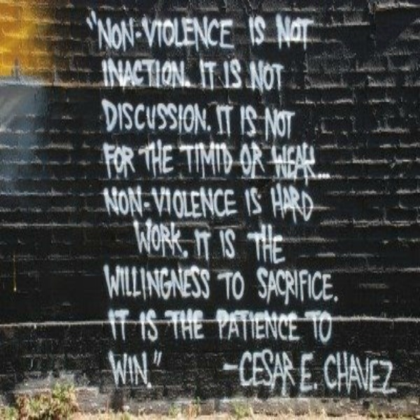 """""""Non-violence is not inaction...""""  - Cesar Chavez"""