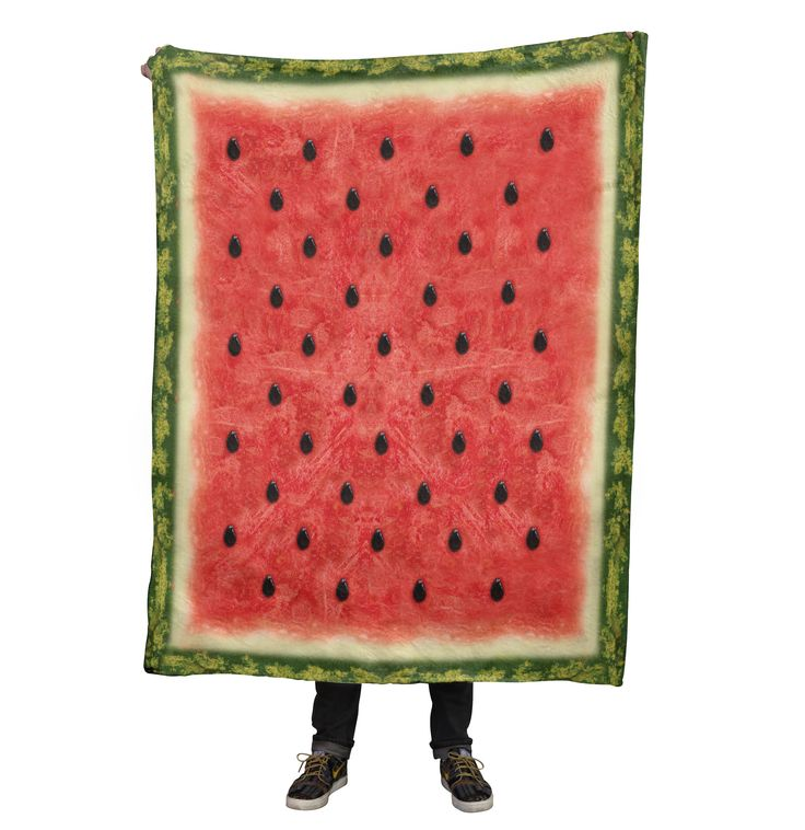 Watermelon Blanket from Beloved Shirts