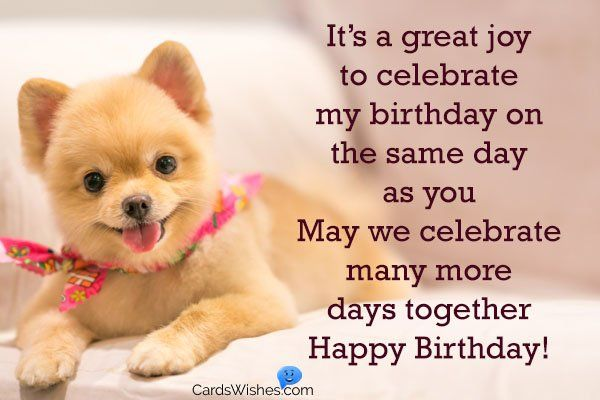 It S A Great Joy To Celebrate My Birthday On The Same Day As You Birthday Wishes Happy Birthday Quotes Happy Birthday