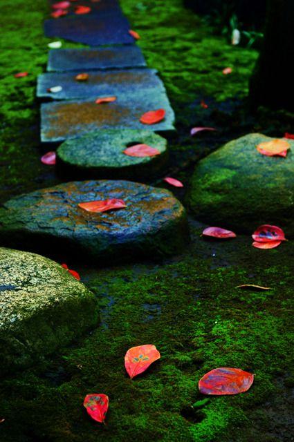 Moss garden at Kyu-Iwasaki-tei Garden in Tokyo, Japan
