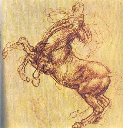 33 best Drawings: Leonardo da Vinci images on Pinterest ...