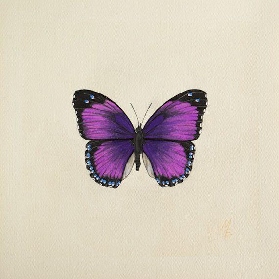 P Moth Decorator 1000+ ideas about Purp...