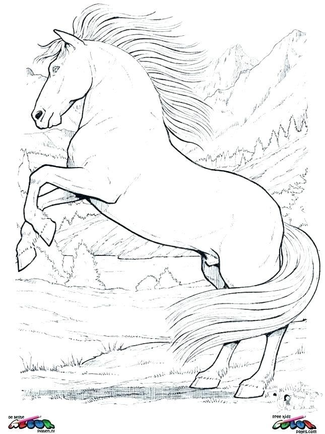 Mustang Horse Coloring Page Youngandtae Com Horse Coloring Pages Mustang Horse Horse Coloring