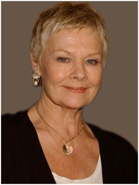 Marvelous 76 Best Judi Dench Style Guru Images On Pinterest Short Hairstyles For Black Women Fulllsitofus