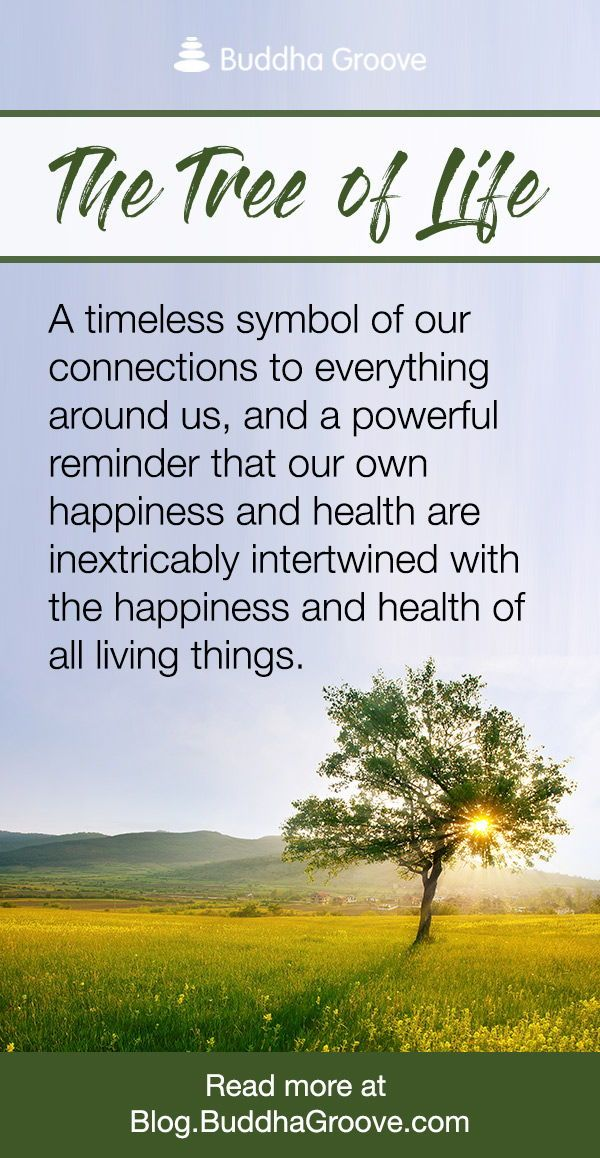 The Tree Of Life Symbol Quotes Inspirations Pinterest Quotes Fascinating Tree Of Life Quote