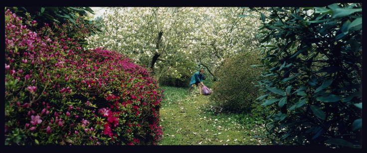 """""""Figure In Landscape"""" 2001   © Denise Grünstein"""