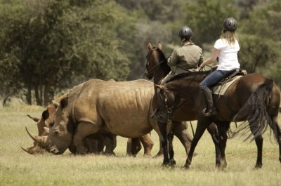 Horizon Horseback Adventures and Safaris riding holiday in South Africa - Far and Ride
