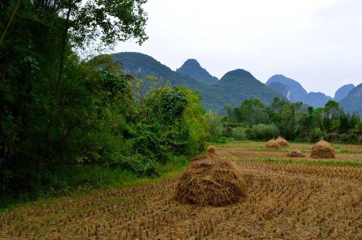 Rural life in Yangshuo, China... #yangshuo #china #travel Photograph // Stephanie Osborn