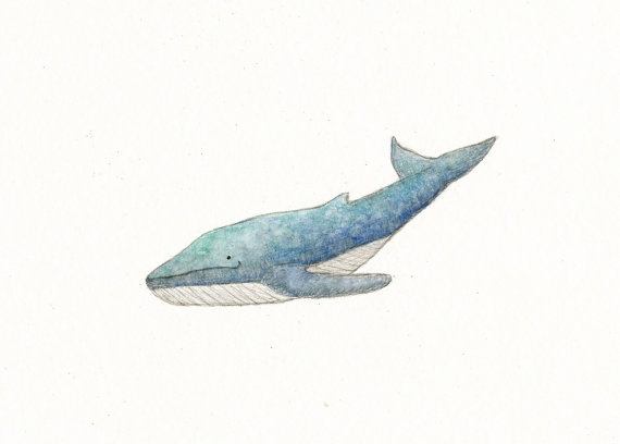 Whale Watercolor: Watercolor Paintings, Whales Watercolor, Baby Whales, Paintings Originals