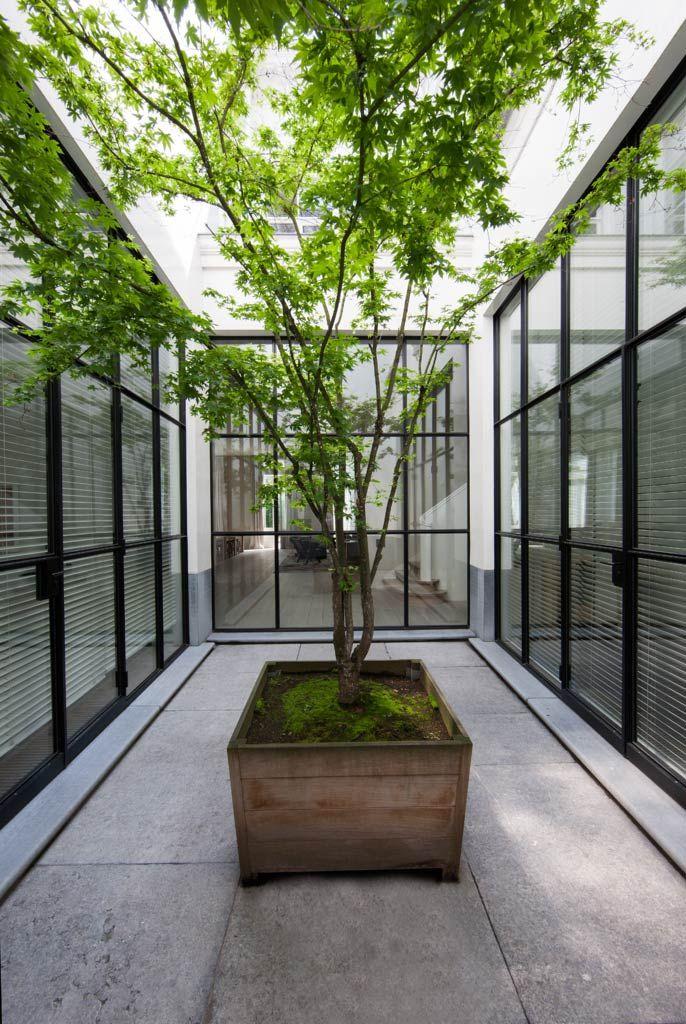 Por muy pequeño o urbano que sea el patio*, un árbol le da vida y otra esencia. courtyard / vvd residence II, antwerpen