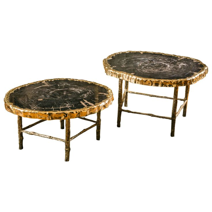 Round Coffee Table Pair: 54 Best Images About Petrified Wood Table On Pinterest